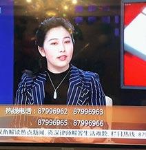电视台嘉宾律师张红律师